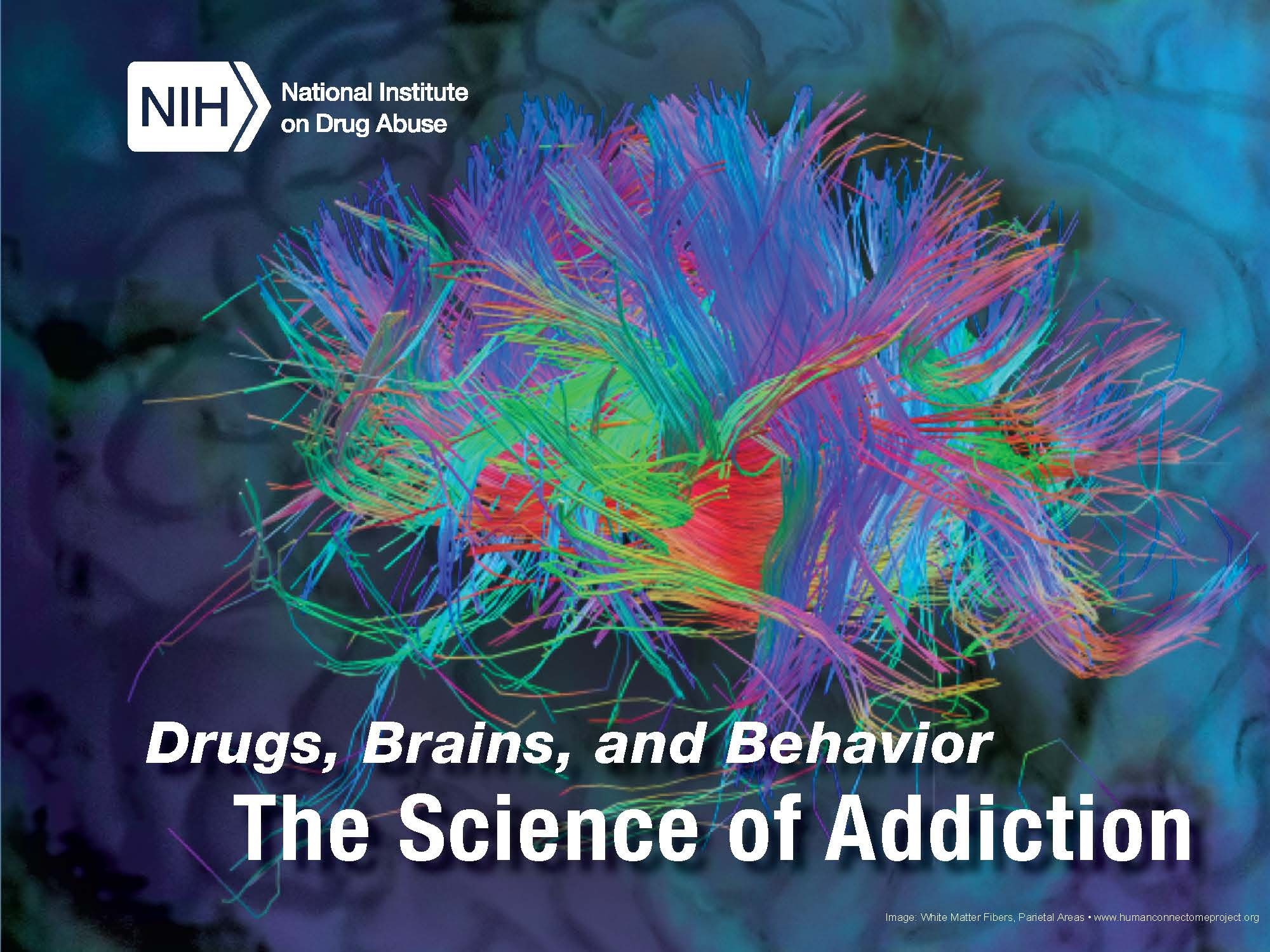 Drugs Brains And Behavior The Science Of Addiction Nida