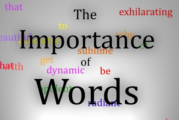 The Importance of Words