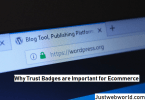 Importance of Trust Seals for E-Commerce