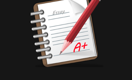 Work with an Essay Plan