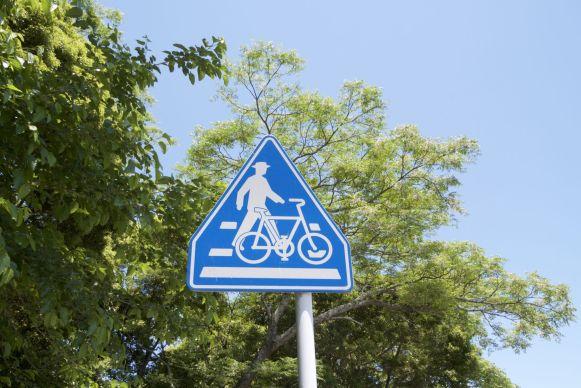 Oversteken bij zebrapaden moet je eigenlijk lopend doen. Daar braken wij de regels net zo hard als de Japanners zelf.