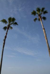Strakblauwe lucht met palmbomen... niet wat ik verwacht had van Japan in de regentijd. Maar mij hoor je niet klagen.