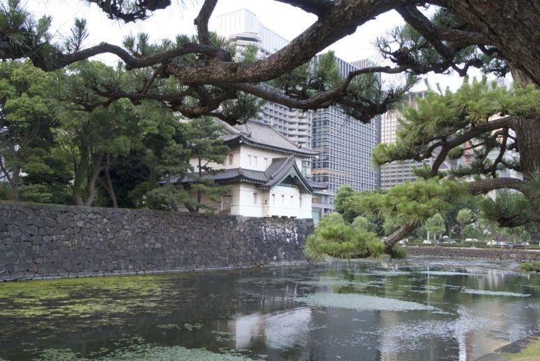 Tokyo contrast.