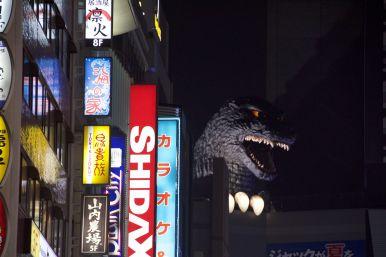 Ook nog even in het donker langs bij Godzilla.