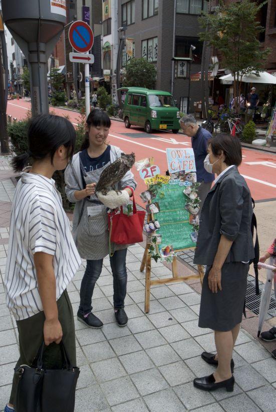 In Japan heb je hopen 'dieren-café's', deze dame staat reclame te maken voor het uilencafé, waar je naast je drankje een uil voor aan tafel kunt bestellen.
