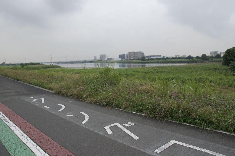 Van onze airbnb is het vrijwel helemaal over een fietspad langs de rivier naar het vliegveld fietsen.