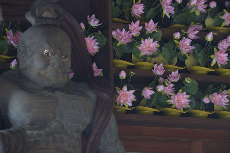 Daar sta je dan stoer te kijken naast je roze bloemetjes....
