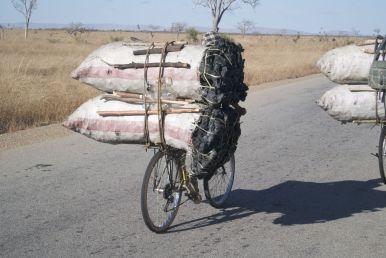 Houtskool vervoeren gebeurt met name met de fiets.