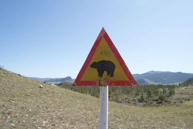 Beren zijn we gelukkig niet tegengekomen.