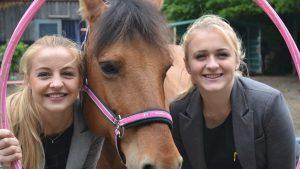 Jugendliche im Coaching mit Pferden I Freiburg im Breisgau