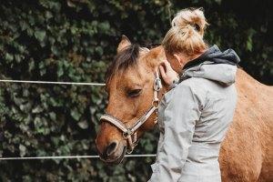 Pferdegestütztes Coaching I Einzelseminar