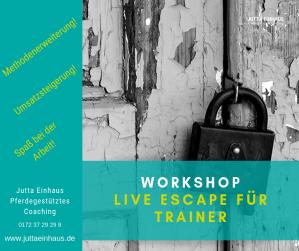 Escape Room in Freiburg I Pferdegestütztes Coaching