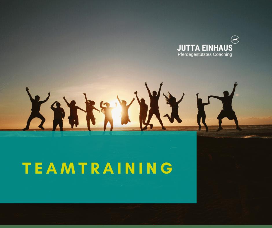 Teamtraining Coaching mit Pferden Deutschland