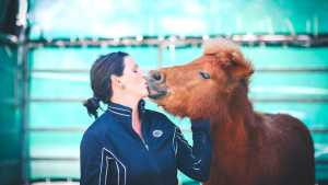 Shettys im Pferdegestützten Coaching