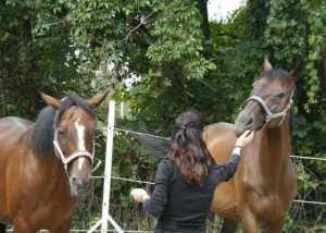 Jutta Einhaus mit Coachingpartner Pferd