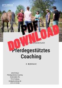PDF Datei zum Downloaden