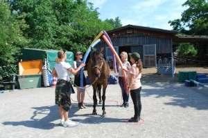 Ausbildung als Pferdegestützter Coach in Deutschland