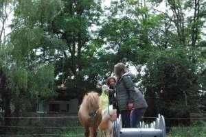 Pferdegestütztes Coaching in Freiburg im Breisgau