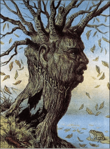 """In one of my favorite images, published in 1884, the decaying tree of American democracy features the branch """"Mormonism."""""""