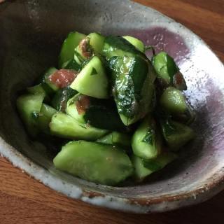 寿山のお野菜辞典 きゅうり