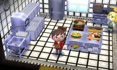 Animal Crossing: Happy Home Designer Blog, Days 19-20 on Kitchen Counter Animal Crossing  id=40014