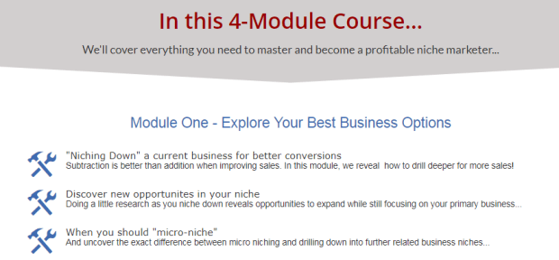 Hot Profitable Niches WSO System by David Perdew