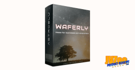 Waferly Business WordPress Theme Review and Bonuses