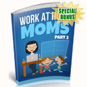 Special Bonuses - December 2018 - Work At Home Moms Part 2