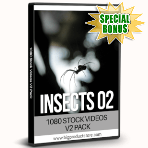 Special Bonuses - August 2019 - Insects Two - 1080 Stock Videos V2 Pack