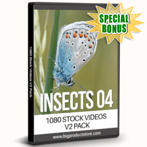 Special Bonuses - August 2019 - Insects Four - 1080 Stock Videos V2 Pack