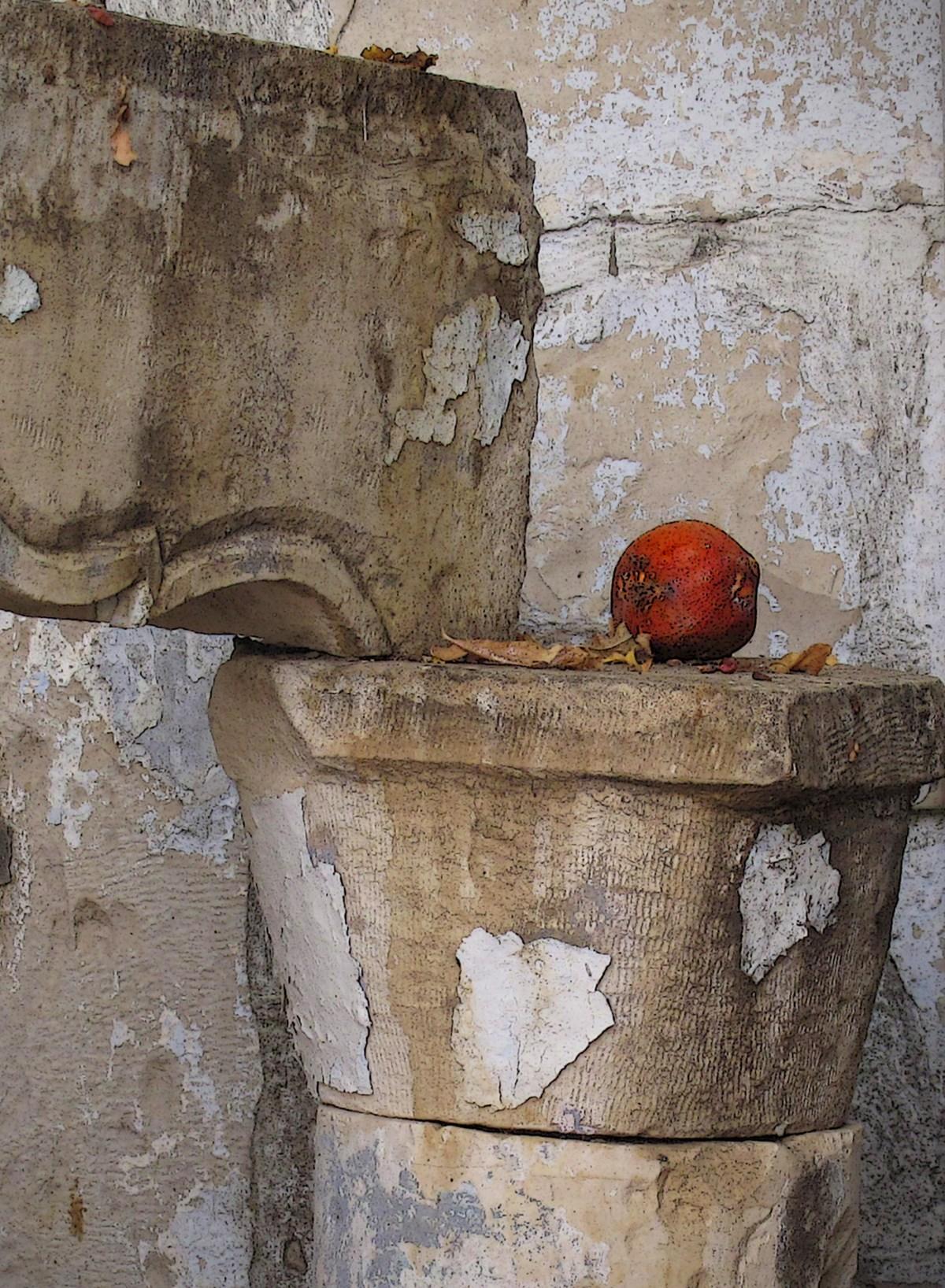 """Jerusalem Pomegranates"" by Sonia Melnikova-Raich"