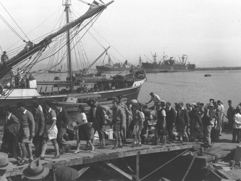 Holocaust survivors arriving in Haifa, Israel, in July 1946 (Photo/National Photo Collection of Israel)