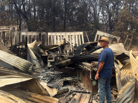 Noor Adabachi surveys the remains of the home he shares with his wife, Debórah Eliezer Adabachi, in the hills west of Healdsburg.
