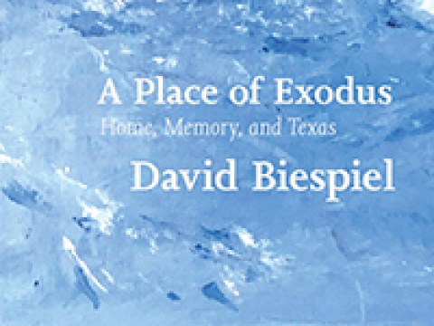 "the cover of ""A Place of Exodus"""