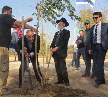 Rabbi Yosef Cowen and Ben Cowen plant a tree. Photo: Tania Susskind