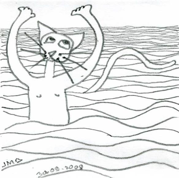 le chat prend l'eau-2009-09-30