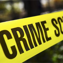8 crime writers