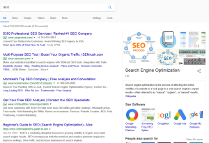 E-commerce SEO terms - Sponsored, organic, and Wikipedia results