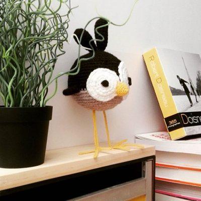 K-ROBAZ IKKA Little bird 2017