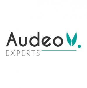 Logo Audeo Experts
