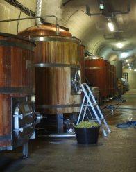 Cuve d'ébullition Bière de Terenez
