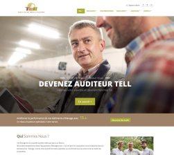 tell-audit