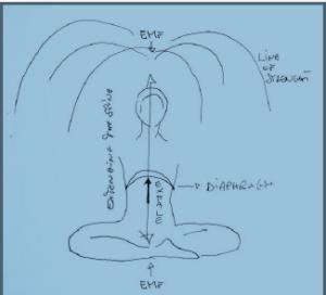 YoP Zeichnung