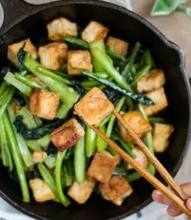 Choy sum (Chinese green) and tofu in garlic sauce feature