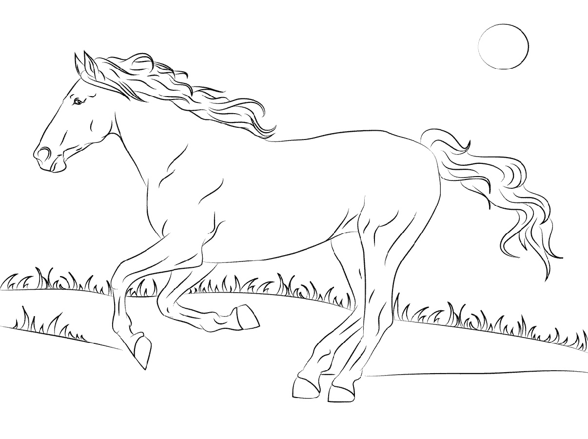 Horse Coloring Book