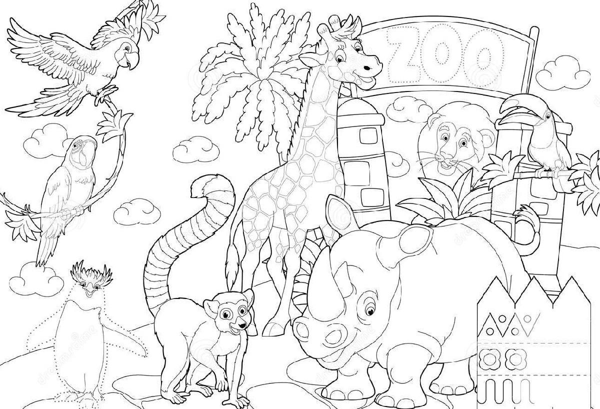 Animal Coloring Book Cartoon Quick Usage