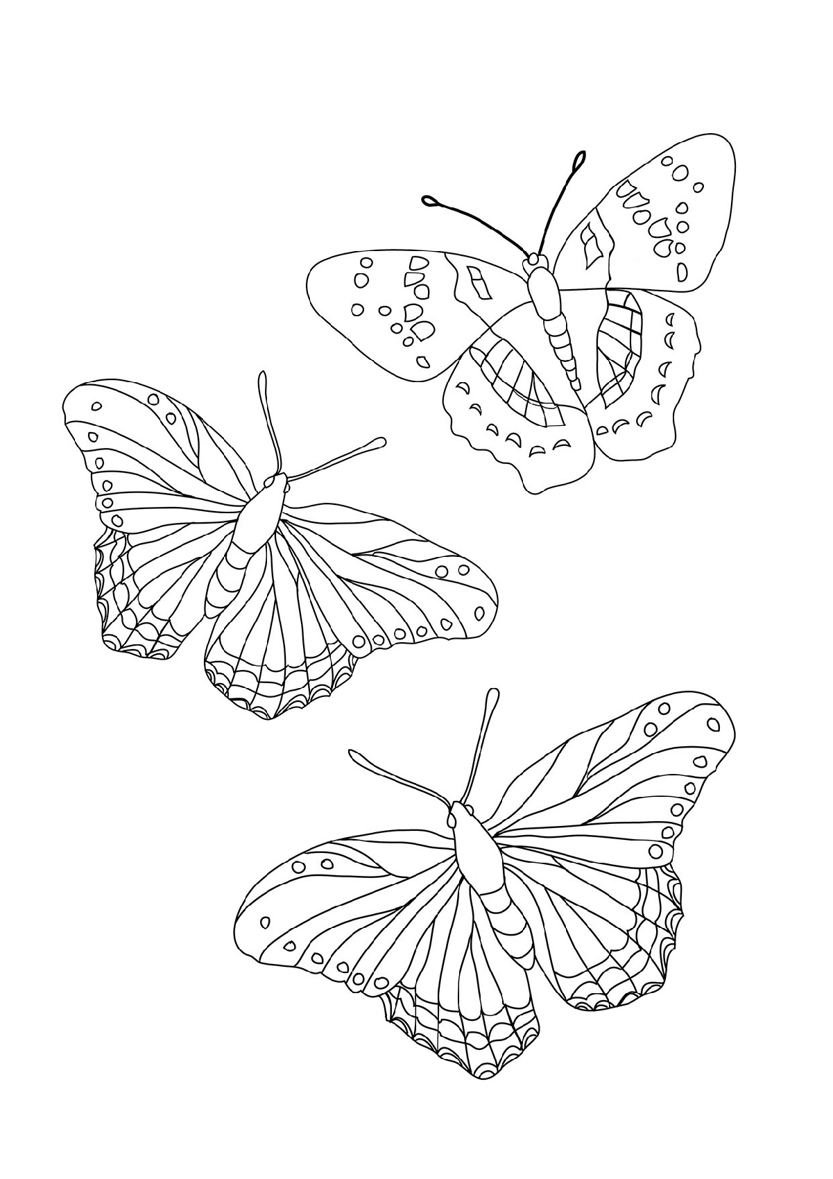Color Code Butterfly Worksheet
