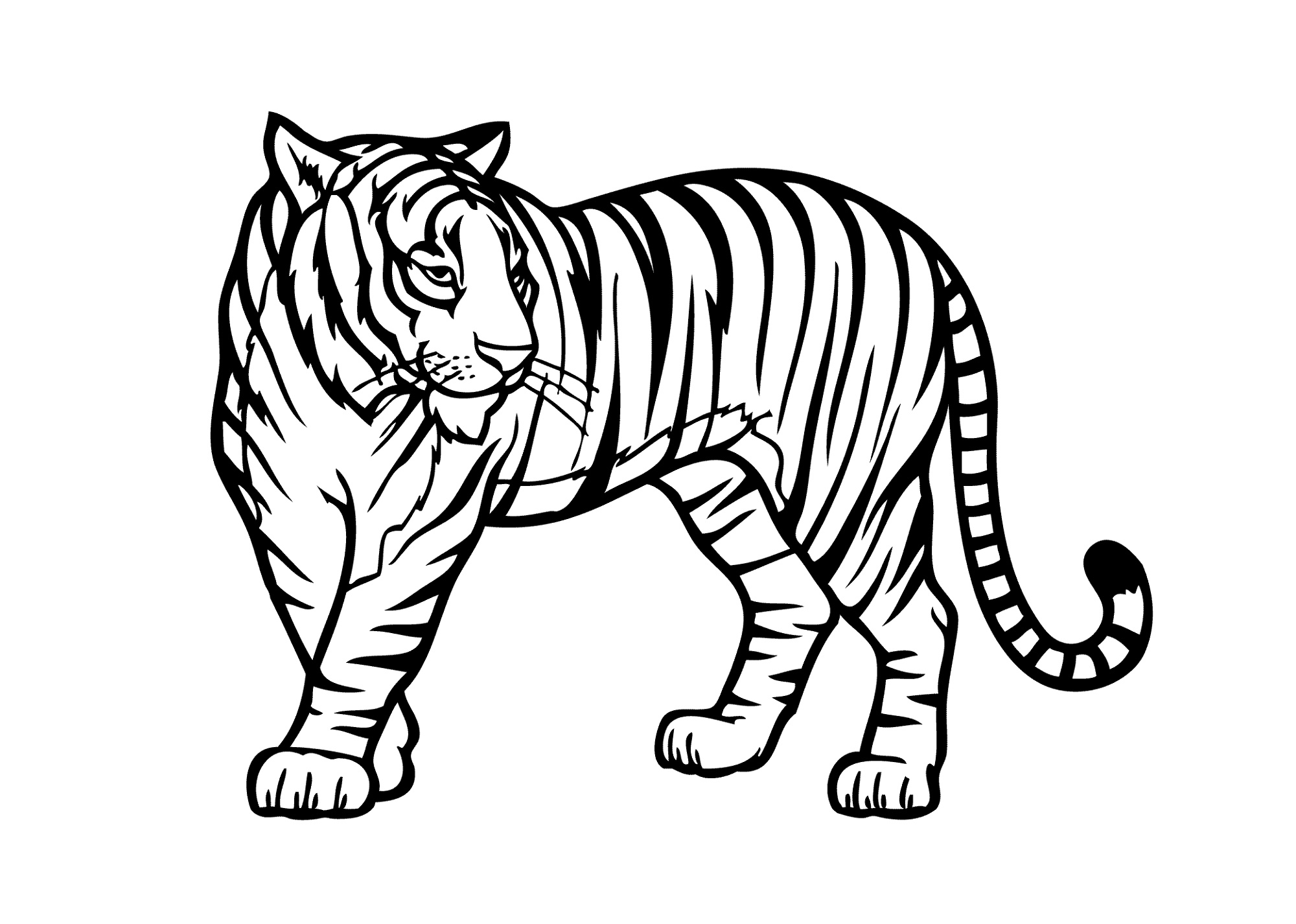 Coloring Pictures Of Animals Jungle K5 Worksheets