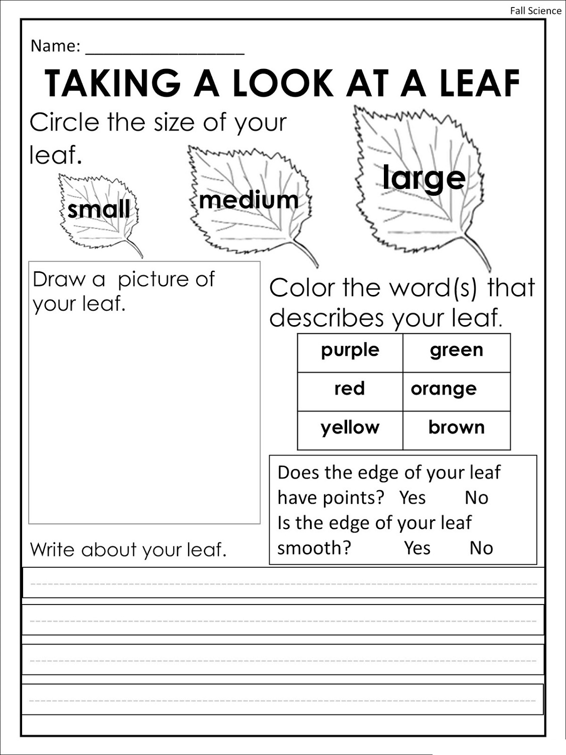 Free Printing Worksheets Science K5 Worksheets
