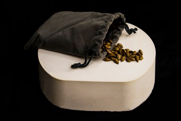 A cloth bag spilling over with apple seeds